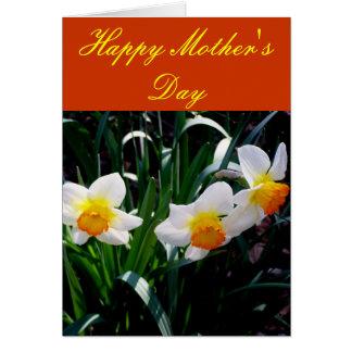 Jonquilles blanches, oranges et jaunes carte de vœux