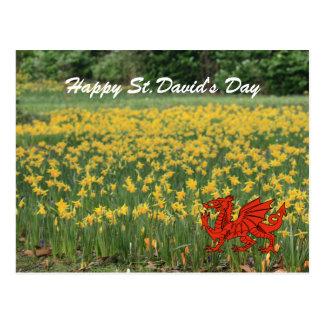 Jonquilles du jour de St David Cartes Postales