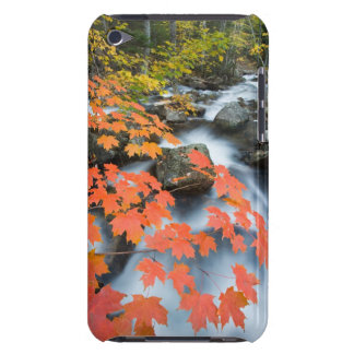 Jordan Stream in fall in Maine's Acadia National iPod Touch Cover
