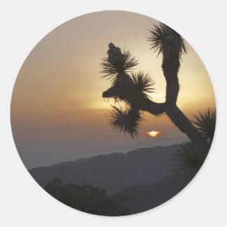 Joshua Tree at sunset Classic Round Sticker