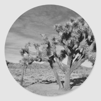 Joshua Tree (black & white) Classic Round Sticker
