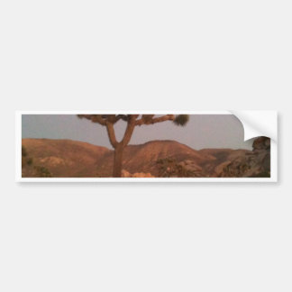 Joshua tree bumper sticker