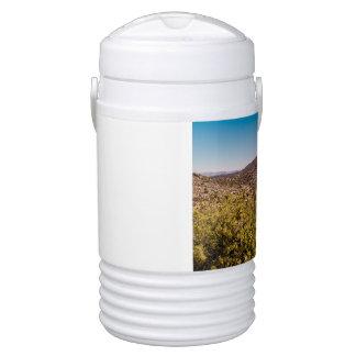 Joshua tree lonely desert road drinks cooler