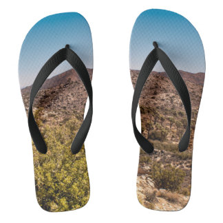 Joshua tree lonely desert road flip flops