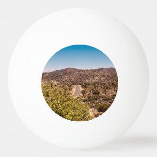 Joshua tree lonely desert road ping pong ball