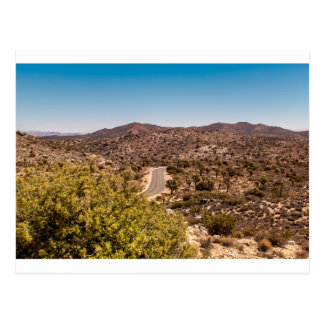Joshua tree lonely desert road postcard
