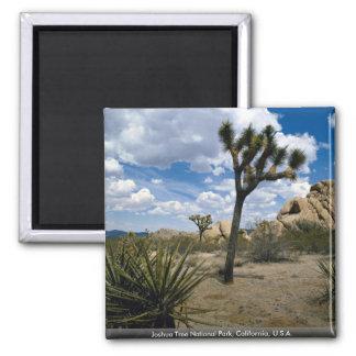 Joshua Tree National Park, California, U.S.A. Magnet