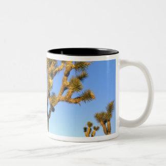 Joshua Tree National Park, California. USA. Two-Tone Coffee Mug