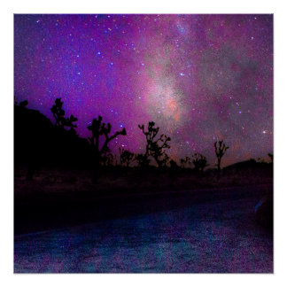 Joshua tree National Park milky way Poster