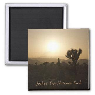 Joshua Tree National Park Square Magnet