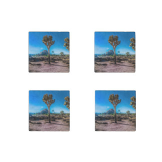 Joshua Tree National Park Stone Magnets