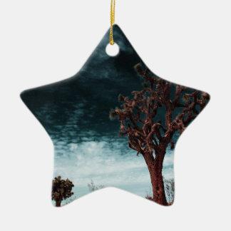 Joshua Tree Special Ceramic Star Ornament