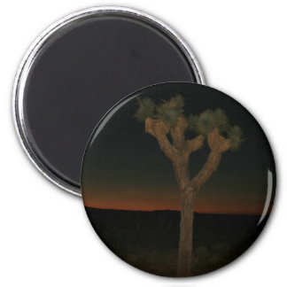 Joshua Tree Sunset Magnet