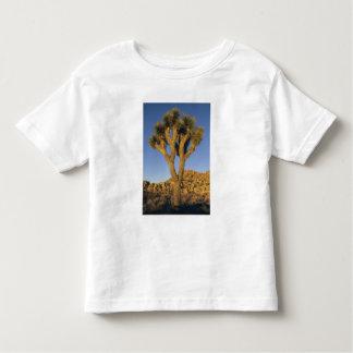 Joshua Tree, Yucca brevifolia), and granite Toddler T-shirt