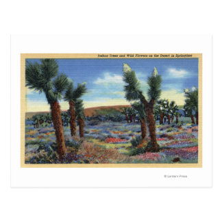 Joshua Trees and Desert Wild Flowers View Postcard