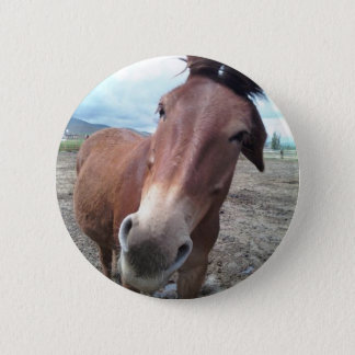 Josie, the funny mule 2 inch round button