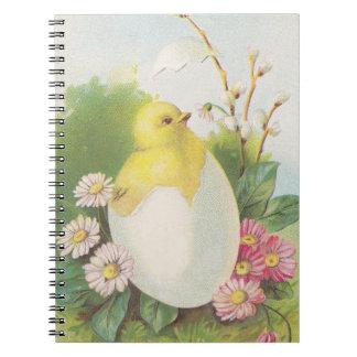 Journal Book Vintage Peep Chicken Chick Baby Hatch