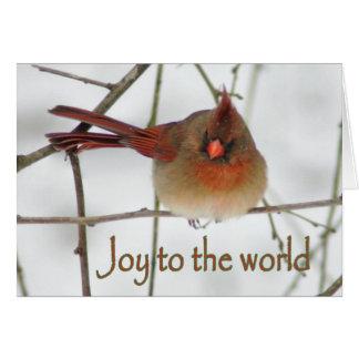 Joy to the Wordl Cardinal Christmas Card