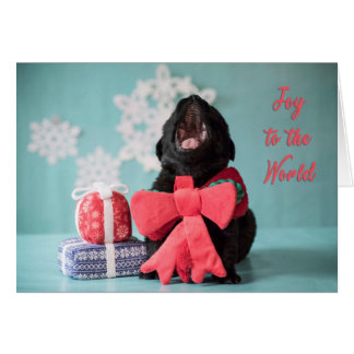 Joy to the world Christmas puppy card