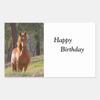 Joyeux anniversaire de belle de châtaigne photo de sticker rectangulaire