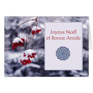 Joyeux Noel et Bonne Annee, Christmas in French Greeting Card