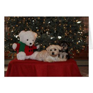 Joyous holiday greetings card