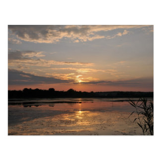 Joys of summer, sunset in somogy county, Hungary Postcard