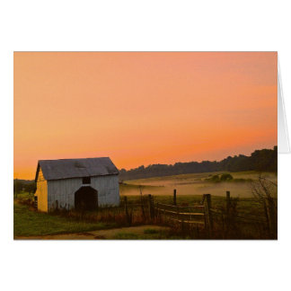Juicy Farm Sunrise Card
