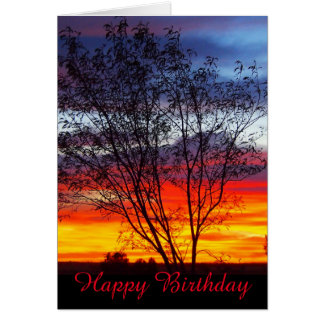 Julia Creek sunset silhouette blank birthday card