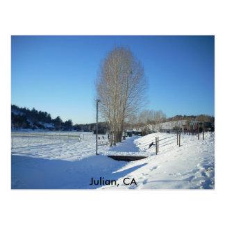 Julian, CA Postcard