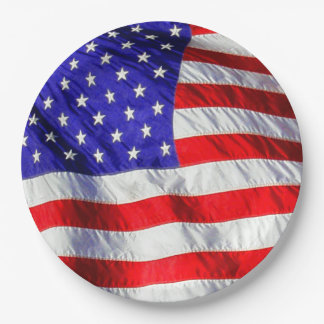 July 4th Waving Flag Paper Plates 9 Inch Paper Plate