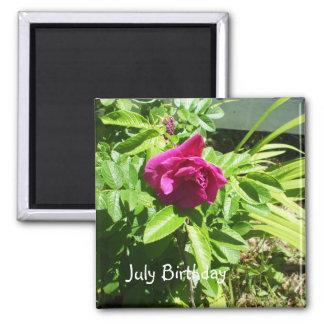 July Birthday Rose Magnet