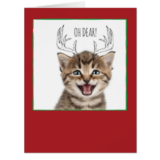 Jumbo Christmas Cats & Doodles Christmas Card