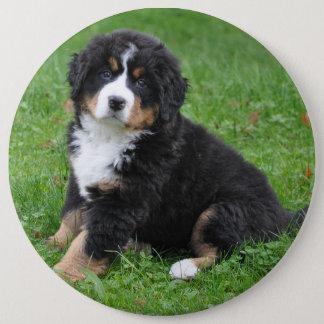 Jumbo custom photo pet pin, love your dog! 6 inch round button