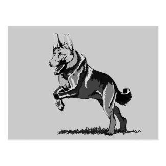Jump shepherd dog postcard
