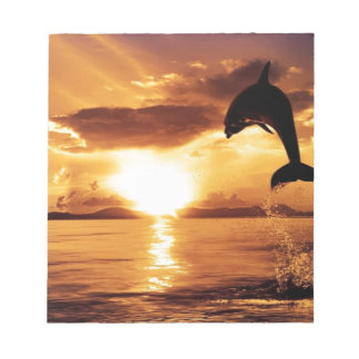 jumping dolphin with beautiful sunset over the sea notepad