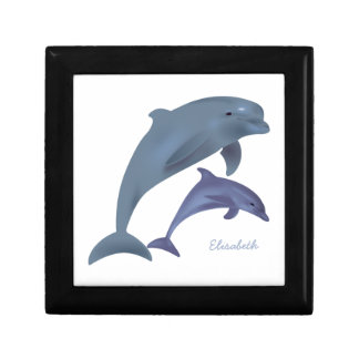 Jumping dolphins illustration name gift box