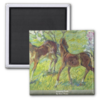 Jumping Foals By Marc Franz Refrigerator Magnet