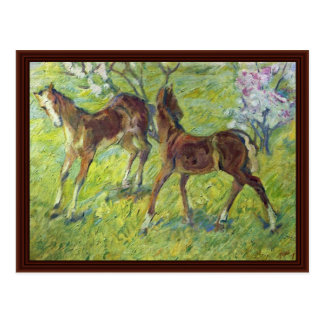 Jumping Foals By Marc Franz Postcard