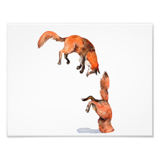Jumping Red Fox Photo Print