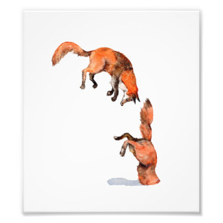 Jumping Red Fox Photo Print