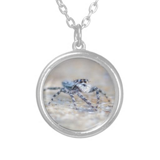 Jumping Spider Jewelry