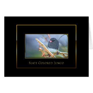 Junco -  Bird Collection - Black/Gold Card
