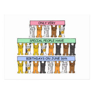 June 16th Birthday Cats Postcard