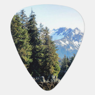 Juneau Guitar Pick