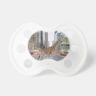 jungle city pacifiers