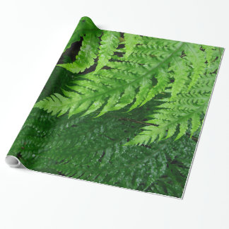 Jungle Ferns Wrapping Paper