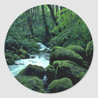 Jungles For Movies Sticker