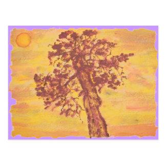 juniper tree sunset postcard
