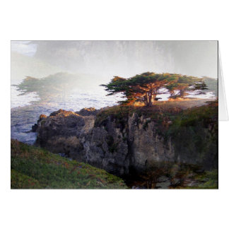 Junipers: Double Vision Card